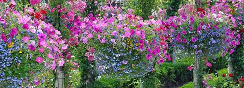 Jardin: pas de place pour vos fleurs ? Suspendez-les !