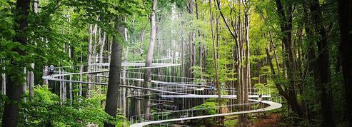 En Turquie, un immense parc d'attractions installé dans une forêt luxuriante