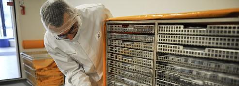 Le laboratoire lyonnais Aguettant selance àlaconquête du monde