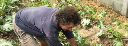 Des salariés agricoles très peu couverts contre la pénibilité
