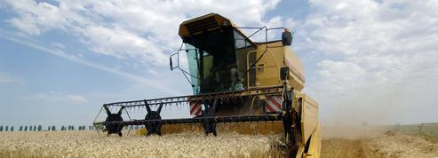 Pour l'OCDE, les aides publiques à l'agriculture sont mal attribuées