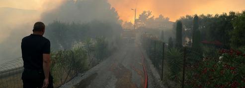«Virulent» incendie près de Nice, une centaine d'hectares partis en fumée