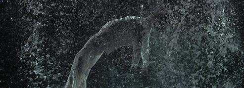 Le crépuscule des dieux selon Bill Viola