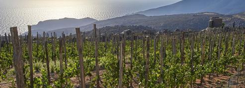 À Tinos, le missionnaire du vin nature