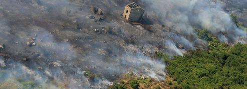 Feux de forêts: quelle est la situation dans le Sud-Est?