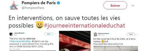 Comment les pompiers, Marine Le Pen ou 007 ont célébré la journée internationale du chat
