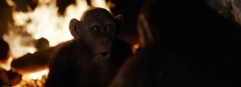 Box-office France: La Planète des singes détrône Valérian