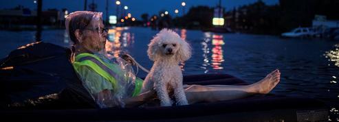Tempête Harvey : une semaine de photos émouvantes et impressionnantes