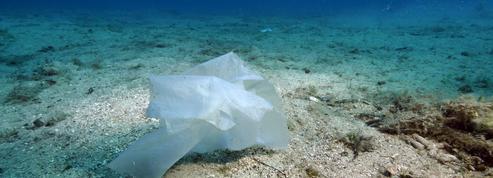 Des particules de plastique piégées au fond des mers