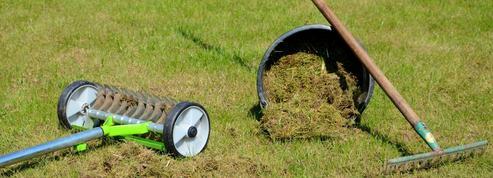 Jardin: offrez une bonne cure de jouvence à votre gazon
