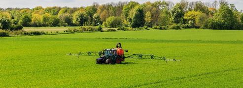 Des agriculteurs très divisés autour du glyphosate