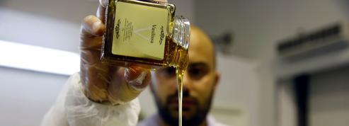 Pesticides : 75% du miel mondial contaminé