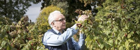 Alain Ducasse: un chef dans le potager de la Reine