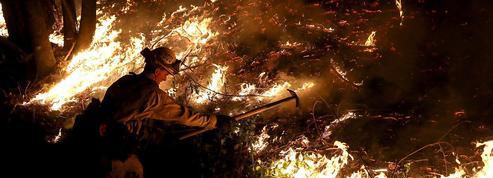 Le bilan s'alourdit encore en Californie, dévastée par les flammes