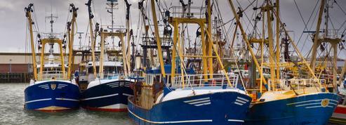 La «pêche électrique» va-t-elle être autorisée en Europe ?
