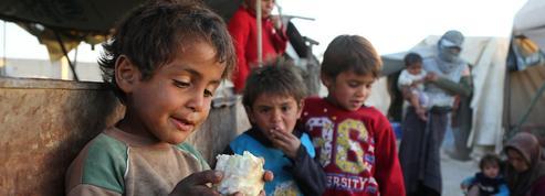 En Syrie, la famine ronge la région de la Ghouta