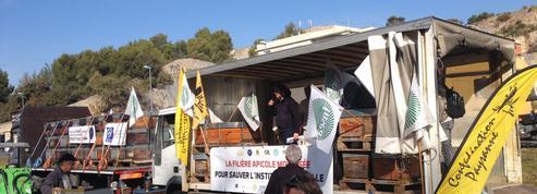 Les apiculteurs mobilisés pour défendre l'institut des abeilles
