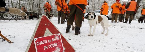 À Belval, dans les Ardennes, une école pour se former à la «chasse responsable»