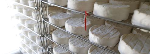 Camembert : la guerre des appellations en passe d'être résolue