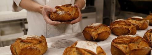 Boulangeries : les artisans en guerre contre les enseignes