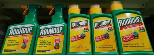 Le glyphosate sème la discorde au sein du gouvernement allemand