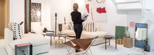 Zeuxis: l'art à la maison