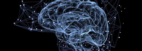 Laurent Alexandre: «Osons améliorer notre cerveau grâce à la science !»