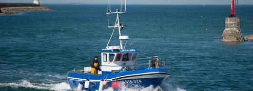 La bataille contre l'autorisation de la pêche électrique prend de l'ampleur