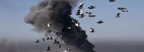Irak : après le départ de Daech, Mossoul répond aux lettres de soutien du monde entier