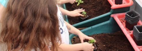 Quand le jardinage change la vie des malades