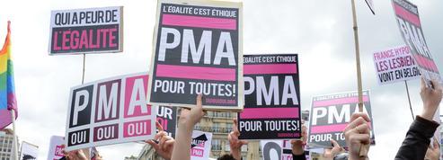 PMA pour toutes: les associations craignent de ne pas peser dans le débat