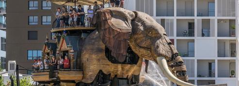 «Pilote de l'Éléphant»: une offre d'emploi atypique à Nantes