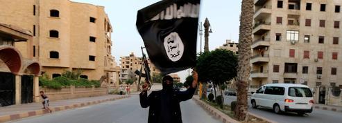 Le djihadisme mis a nu