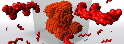 Comment l'ADN permet de fabriquer des nano-outils