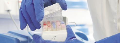 PMA, fin de vie, génétique… les sujets sensibles des états généraux de la bioéthique