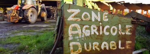 Notre-Dame-des-Landes : les expropriés vont pouvoir récupérer leurs terres