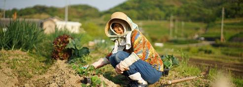 Le gouvernement japonais réfléchit à la retraite au-delà de 70 ans