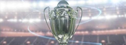 Qui a donc volé les deux Coupes de France du Stade Rennais ?