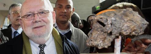 Crâne de Toumaï : les six étapes de dix-sept années de polémiques et de rebondissements