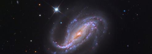 Un astronome amateur capture par hasard une explosion d'étoile