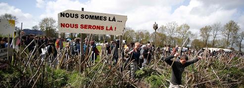 Notre-Dame-des-Landes : les 90 hectares de la discorde