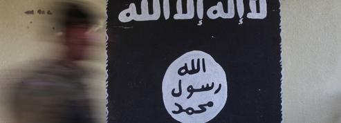 Les outils de propagande de Daech «compromis» par une opération de police internationale