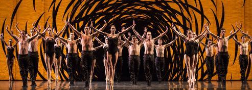 Étés de la danse, Musicora: les sorties à réserver cette semaine à Paris