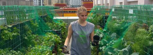 Ateliers de jardinage à Paris: les mains dans la terre