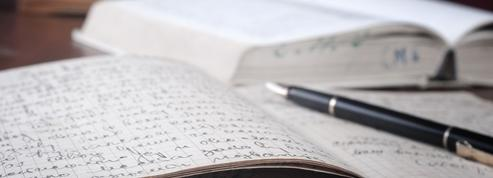 Défense de la langue française:ni laxisme ni purisme