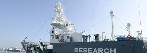 Chasse aux baleines : le Japon exploite une faille juridique depuis 1987