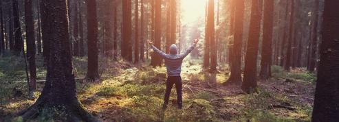 Pourquoi la nature est une source de résistance au stress