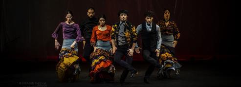 Arte Flamenco, l'Andalousie au cœur