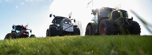 Agriculture: les prix devraient rester bas sur la prochaine décennie