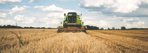 Un rebond inattendu de l'agriculture en 2017